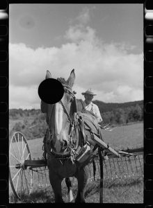 Black & White photograph of a farmer behind a plow and horse. A black hole has been punched through the photo blocking out the top of the horse's head.